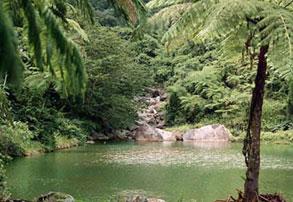 Photo of Puerto Rico